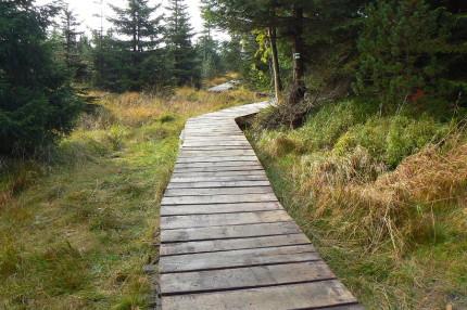 Obnova návštěvnické infrastruktury a revitalizace rašelinišť v CHKO Jizerské hory