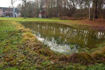 Tůně v zámeckém parku Český Dub
